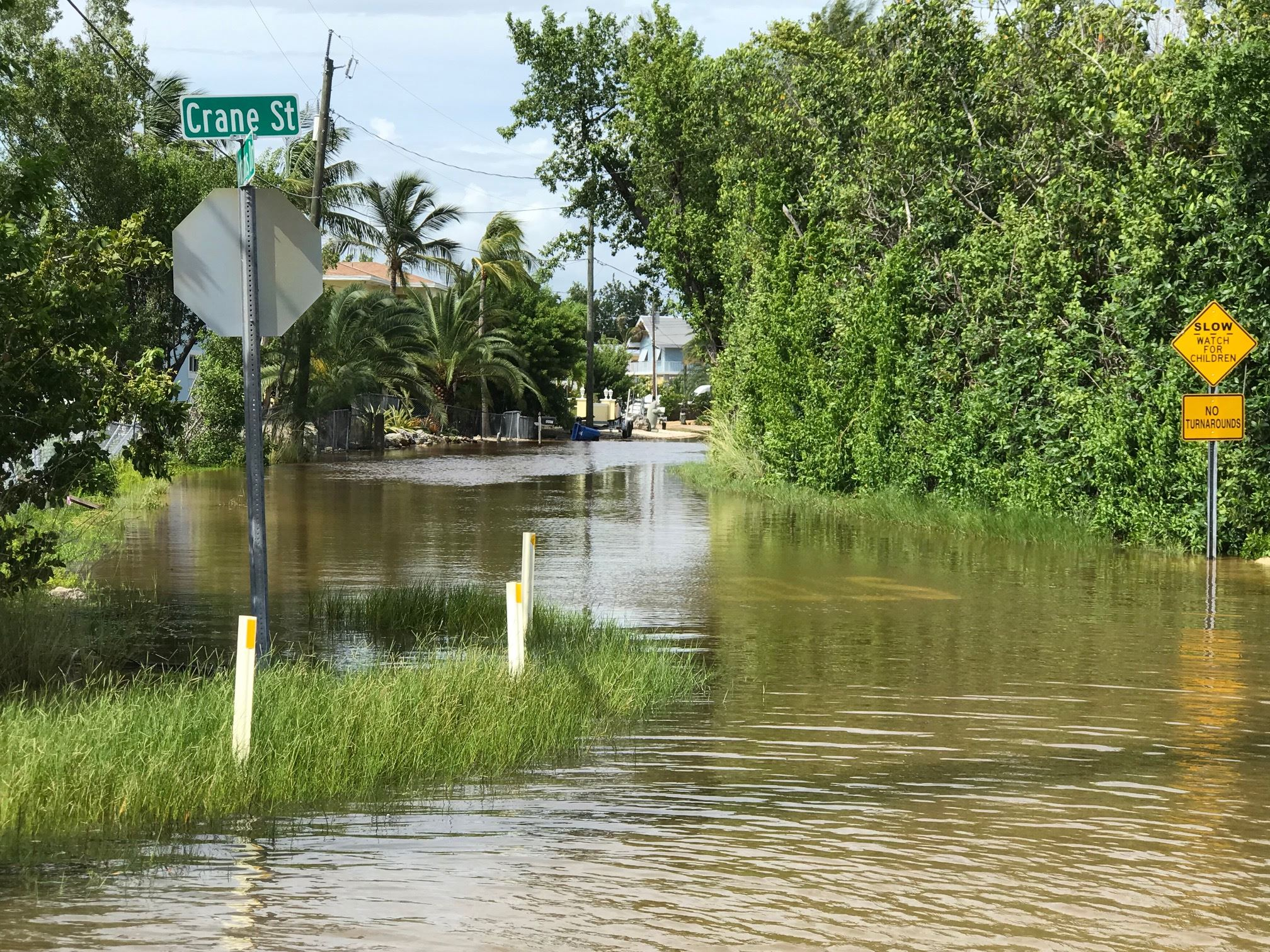 A street in Key Largo is underwater due to king tide events in the Florida Keys